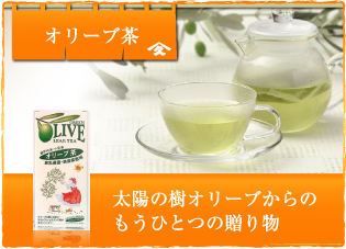 オリーブ茶 太陽の木オリーブからもうひとつの贈り物
